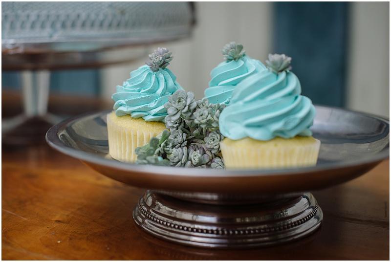 Cupcakes Sukkulenten