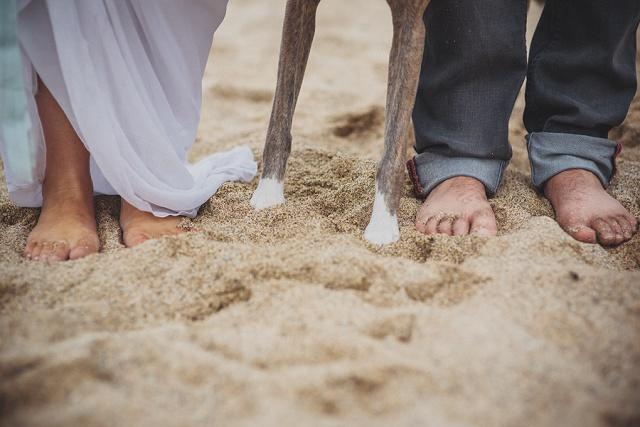 Hochzeit Foto mit Hund