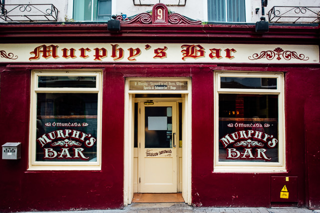 Irland-Schlösser und Herrenhäuser - Rundreise - Marion and Daniel  (38 von 100)