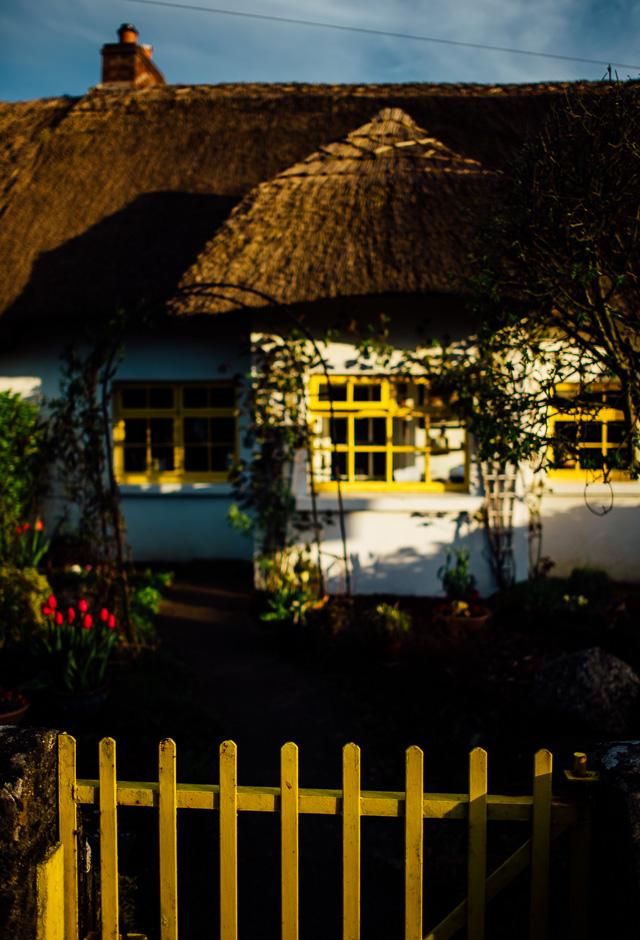 Irland-Schlösser und Herrenhäuser - Rundreise - Marion and Daniel  (46 von 100)
