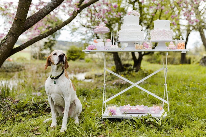 Maria Luise Bauer _ Wedding Table Inspiration (27)