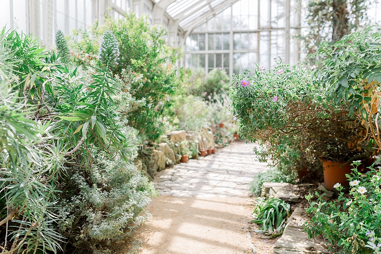 Brautfrisuren styling ideen im botanischen garten - Styling ideen ...