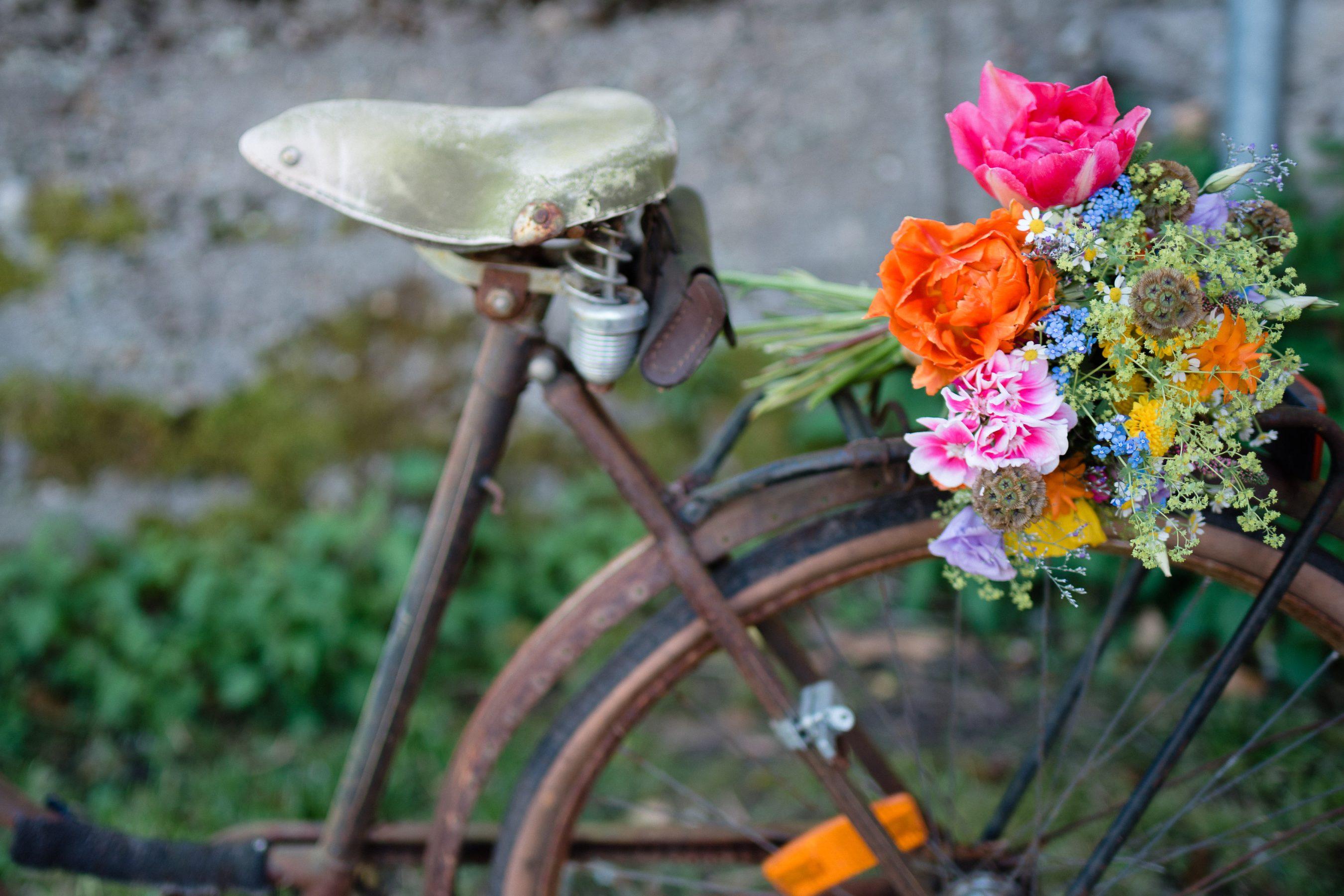 AnnaZeiterphotography_Flowershoot-1295