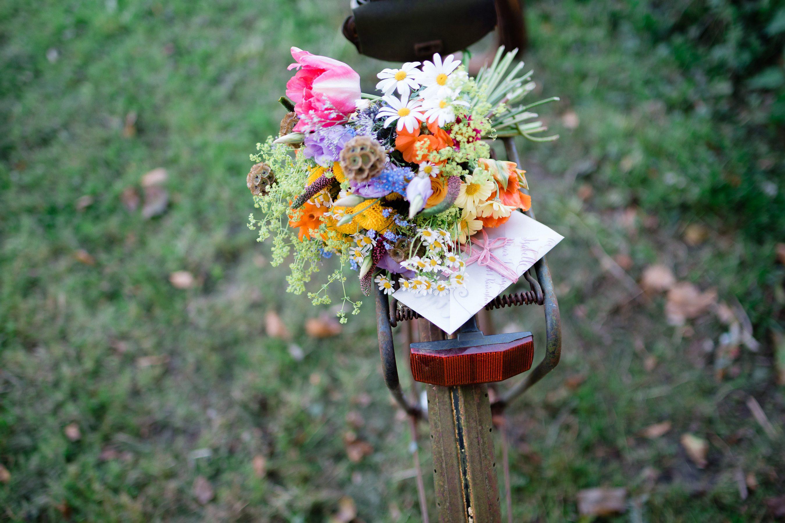 AnnaZeiterphotography_Flowershoot-1304