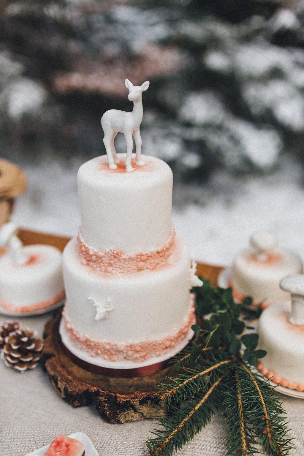 winter_wedding_forrest(22von86)