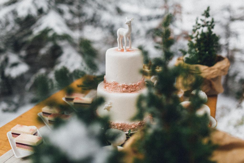 winter_wedding_forrest(28von86)