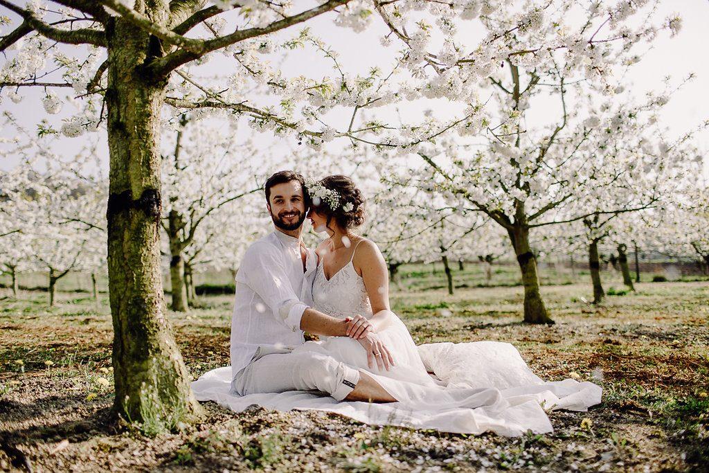 Ein Ja unter Kirschblüten