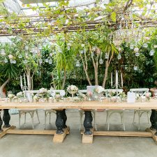 Romantische Hochzeit im Gewächshaus in der Alten Gärtnerei