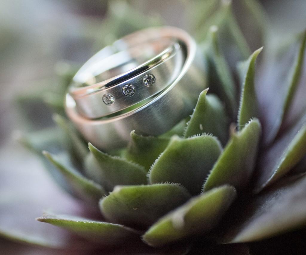 Sukkulente als Ringkissen zur Hochzeit