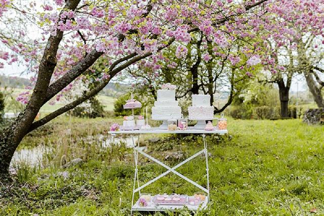 Frühling und Kirschblüten: Sweet Table Inspirationen und 6 Tipps zum Selbermachen