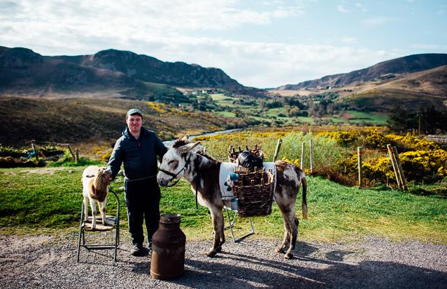 Irland-Schlösser und Herrenhäuser - Rundreise - Marion and Daniel  (65 von 100)