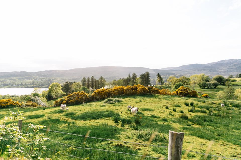 Irland_JuliaHofmann (38 von 103)