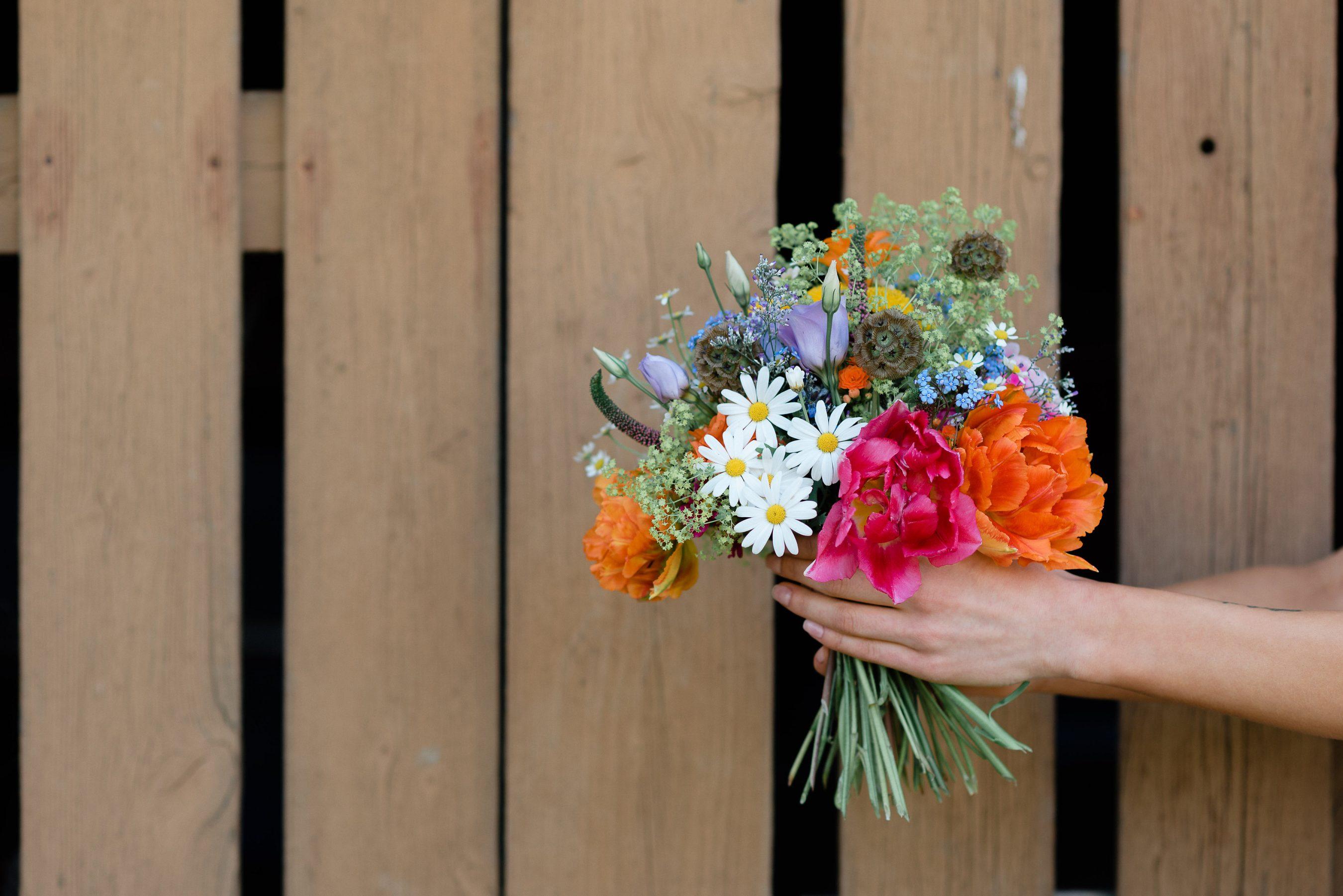 AnnaZeiterphotography_Flowershoot-1131