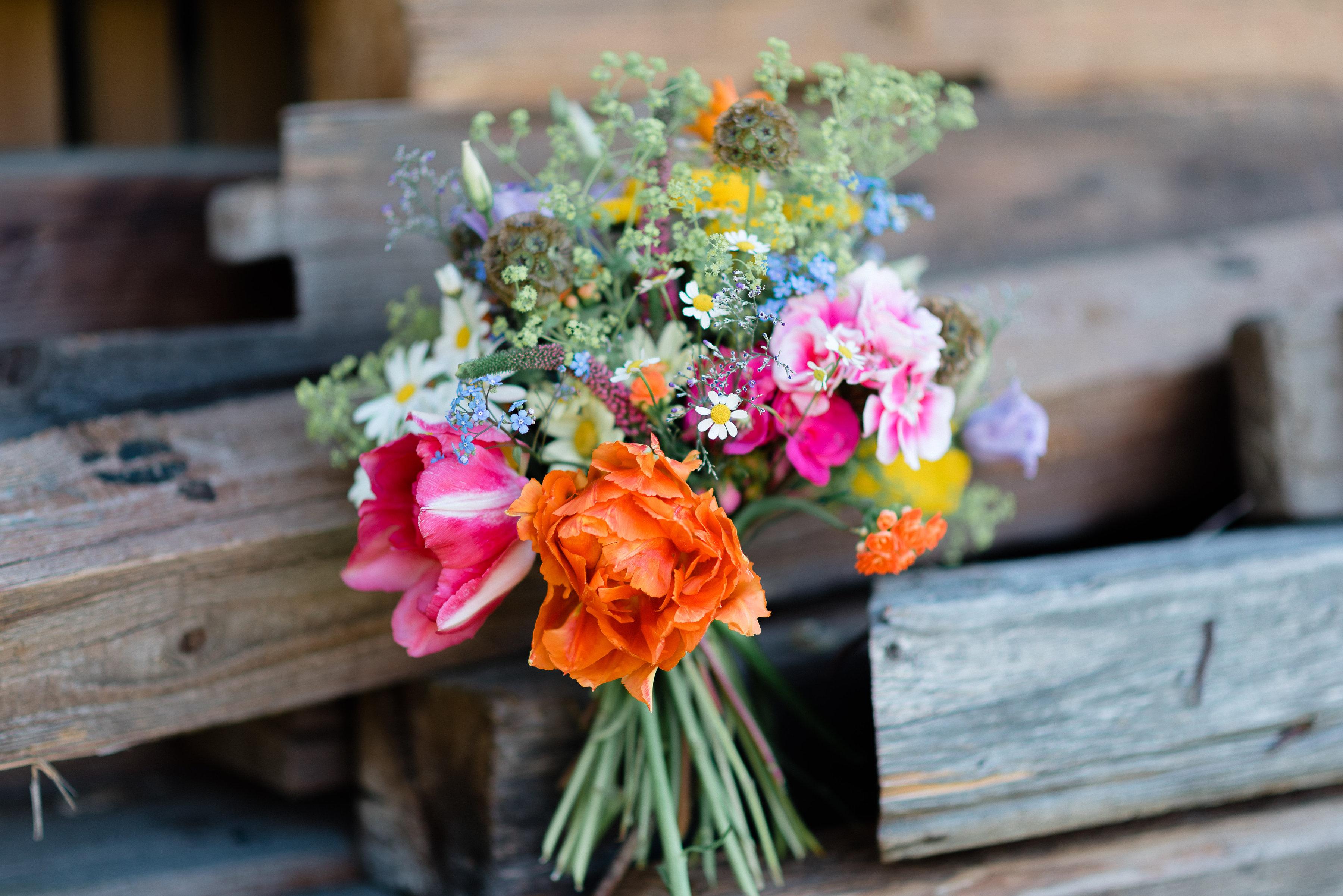 AnnaZeiterphotography_Flowershoot-1282
