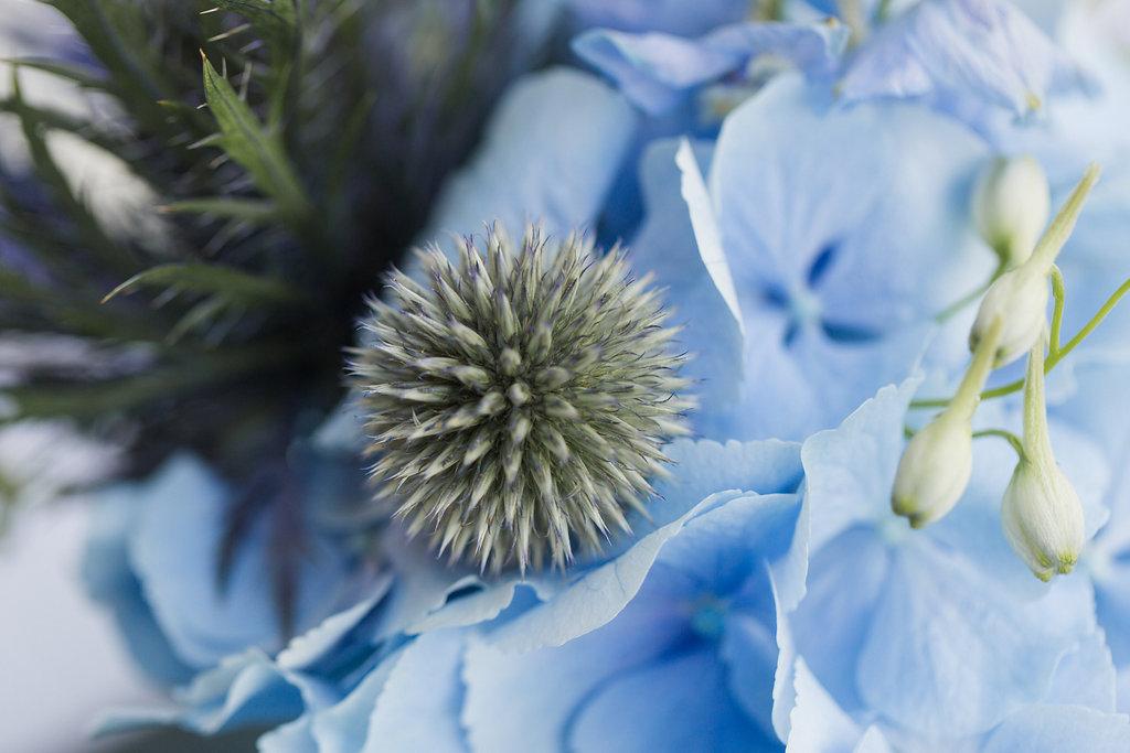 Julia_Schick_Fotografie_Gefaesse_Florale_Manufaktur_-2378