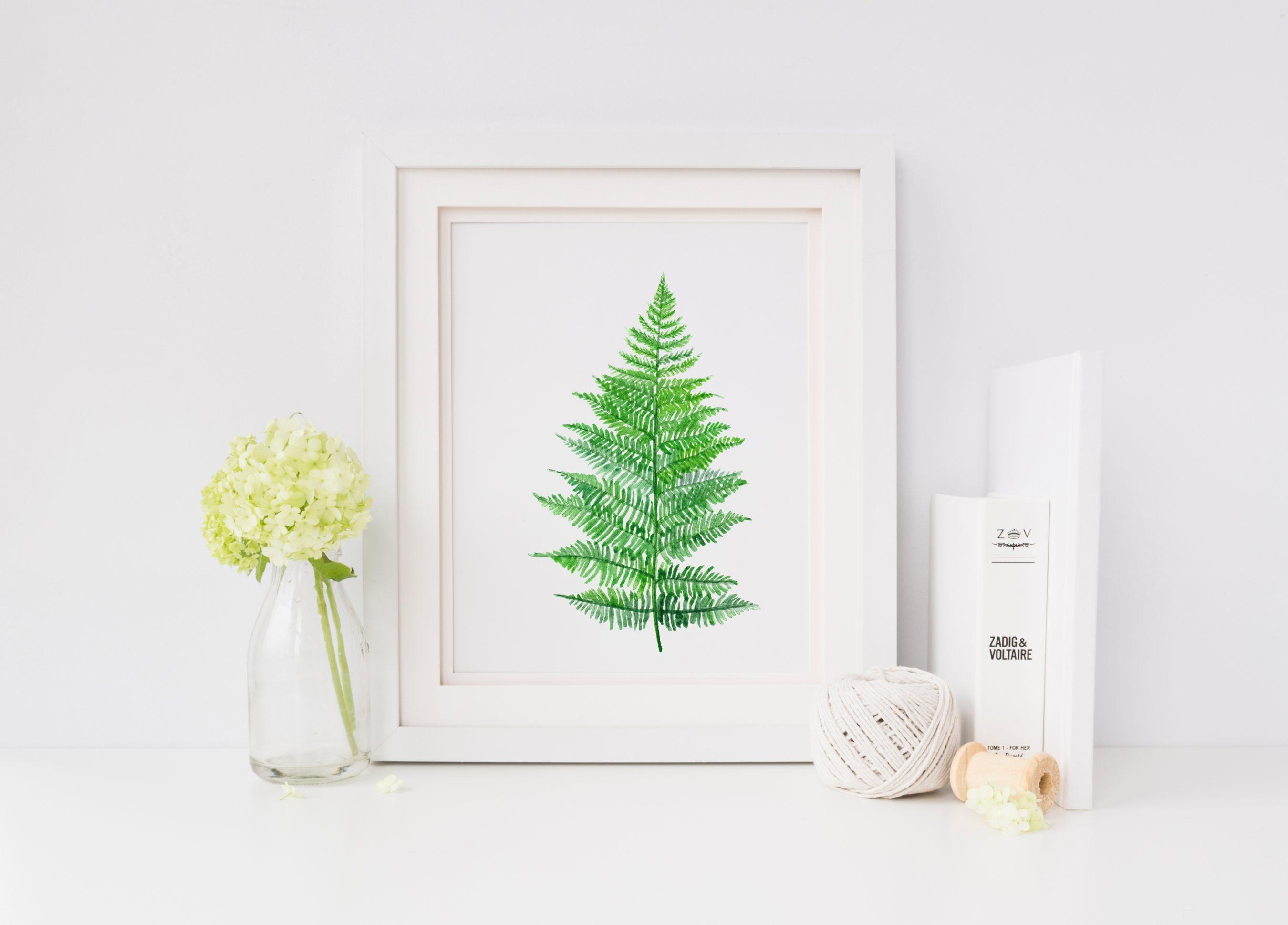 Farn-GreeneryCollection